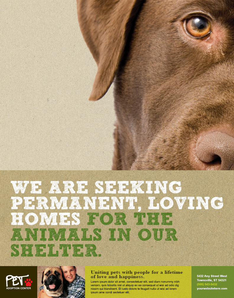 Animal Shelter Pet Adoption Poster by 4pmdesign.com - Pets & Animals, Posters, adoption, shelter